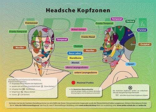 4-Elementeverlag Poster der Reflexzonen: die Headschen Kopf-Zonen