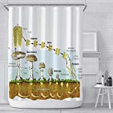 Cortinas De Baño Impermeable Antimoho Cortina Bañera Poliester Tela Seta con 12 Ganchos para El Hogar Los Hoteles Duchas 180 X 220 Cm