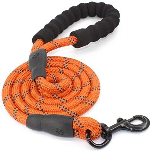 5 FT Starke Hundeleine mit Bequemen Gepolsterten Griff, Starke Reflexnähte der Trainingsleine für Sicherheit Nachts, eignet für Alle Größe Hunde(Orange)