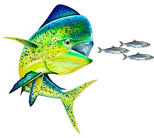 avgrafx Mahi Mahi Chasing Bait Fishing Color Decal 12