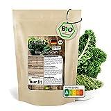 nur.fit BIO Grünkohlpulver 500g – veganes Gemüsepulver aus getrocknetem Grünkohl in Bioqualität aus deutschem Anbau – für Smoothies, Bowls, Shots
