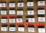 20 LESEDOSEN fruits und vegetables MONTESSORI Englisch Grundschule + FREIARBEIT Schulanfang * Früchte und Gemüse für Englischunterricht