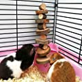 Yitaocity Natural Wooden Chew Tooth Grinding For Small Pets Rabbit Hamster Guinea Pig Toy from eTaocity