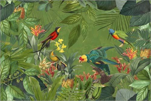 Acrylglasbild 60 x 40 cm: Tropischer Dschungel von Andrea Haase - Wandbild, Acryl Glasbild, Druck auf Acryl Glas Bild