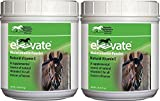 (2 Pack) KENTUCKY PERFORMANCE PROD 044097 Elevate Maintenance Powder Supplement For Horses, 2 lb