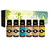Tropical Gift Set of 6 Premium Grade Fragrance Oils - Coconut Cream, Bay Rum, Pina Colada, Tahitian Vanilla, Ocean Breeze, Pineapple - 10Ml - Scented Oils