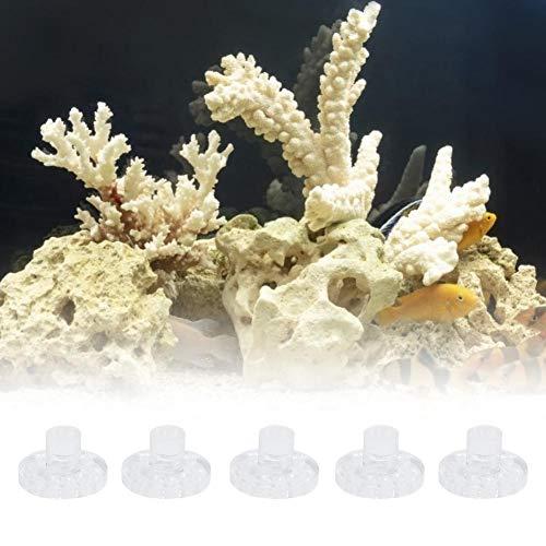 Pssopp 5 Stücke Aquarium Korallen Frag Rack Acryl Korallen Halterung Set Hohe Transparente Aquarium Korallen Basis Stehen Aquarium Korallen Ornament Zubehör