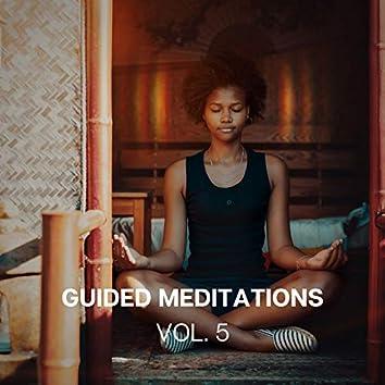 Guided Meditations (Vol. 5)