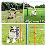Equipos De Agilidad for Perros Juegos Al Aire Libre Ejercicio De Equipo De Entrenamiento Kit De Inicio Barra De Obstáculos for Saltar