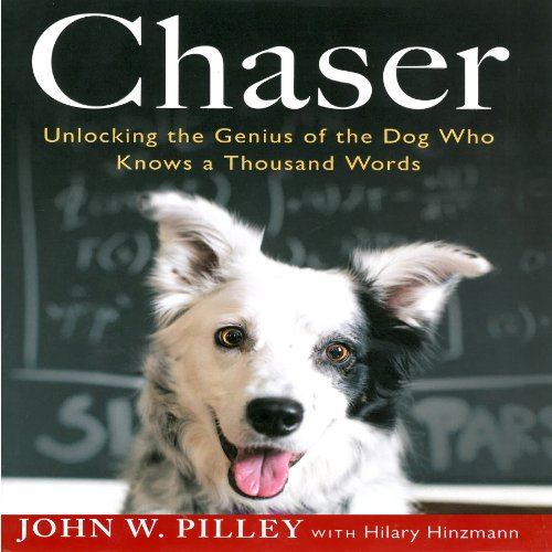 Chaser audiobook cover art