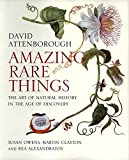 Amazing Rare Things – The Art of Natural History in the Age of Discovery