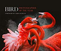 Bird Photographer of the Year Collection