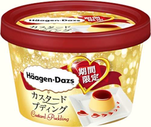 【ハーゲンダッツアイスクリーム】 ミニカップ 新作 カスタードプディング 12個