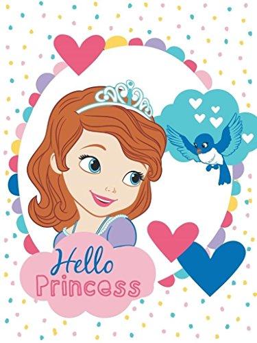 Princesses Sofia couverture douillette plaid bébé 75x100 cm bébé fille célèbre Princesse Baby Girl