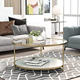 P PURLOVE Round Coffee Table 2 Tier Coffee Table with Storage Shelf, 33.5' Glass Coffee Table with with Glass Tabletop and Metal Frame for Living Room