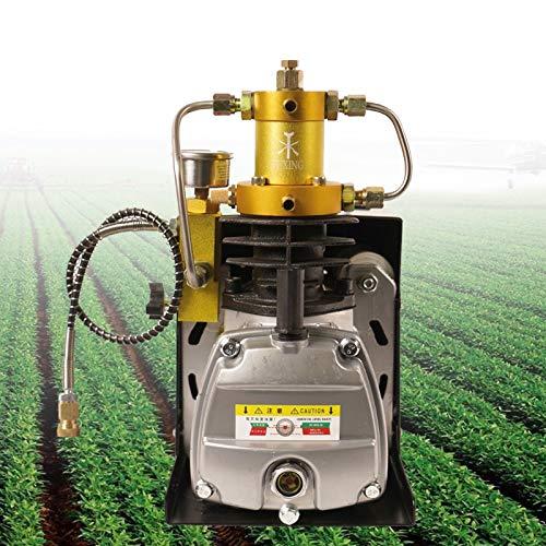 Compresor de aire automático de 1,8 kW, 2800 W RPM, bomba de aire de alta presión, 30 Mpa 4500 psi, compresor de aire eléctrico PCP, 34 cm x 32 cm x 18 cm
