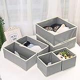 Qisiewell Caja de almacenamiento para ropa interior y calcetines, 6 cajones,...