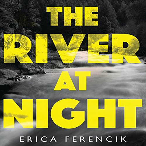 The River at Night audiobook cover art