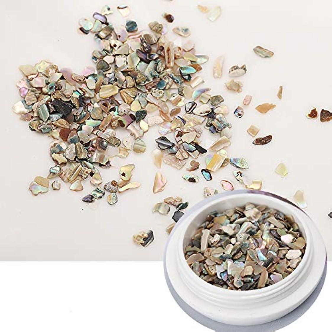 ネイル石パーツ ネイル貝殻風 シェル 貝 レジン ジェルネイル ネイルアート ネイルパーツ (2)