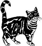 WYG 2 pegatinas de coche para coche, 2 unidades, diseño de gato americano, lindo animal de moda, adhesivo de vinilo,...