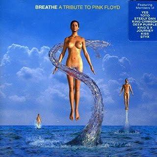 Mejor Breathe Pink Floyd de 2021 - Mejor valorados y revisados