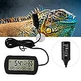 Termometro Igrometro Monitor Gauge, Allarme automatico Incubatrice per uova Temperatura massima minima Umidità Display LCD Rettile digitale Anfibio Serbatoio Termometro Igrometro con sonde a distanza