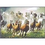 WMK Fußmatte Schuhunterlage - Horses - Pferde 45x