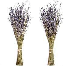 Timoo Dried Lavender Bundles 100% Natural DriedLavenderFlowers for Home Decoration, Photo Props, Home Fragrance, 2 Bundl...