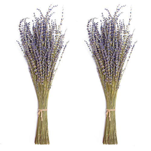 Timoo Dried Lavender Bundles 100% Natural Dried Lavender Flowers for Home Decoration, Photo Props, Home Fragrance, 2 Bundles Pack
