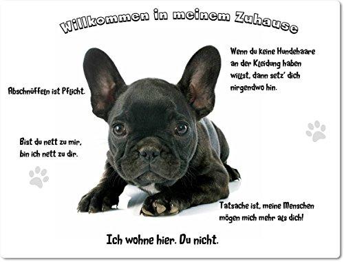 Merchandise for Fans Blechschild/Warnschild/Fun Türschild - Willkommen in Meinem Zuhause - Motiv: Französische Bulldogge Welpe schwarz - 08 - (20x30cm)