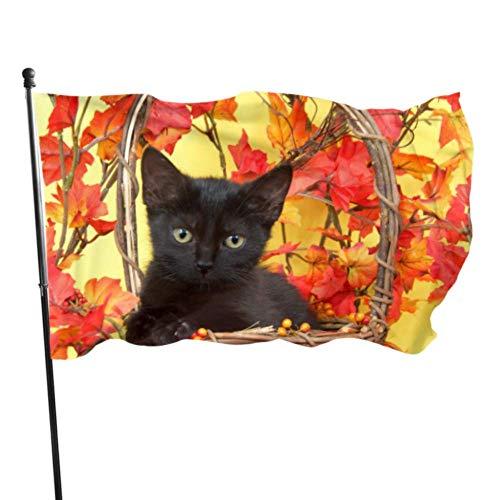 DJNGN Gatito Negro difuso en Canasta de Calabaza de Mimbre con Banderas Decorativas para el hogar en Y para decoración 3x5 pies Col Vibrante