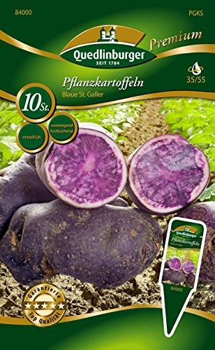 Quedlinburger 84000 Kartoffel Blaue St. Galler (10 Stück) (mittelfrüh, vorwiegend festkochend) (Pflanzkartoffeln)
