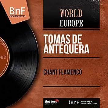 Chant flamenco (Mono version)