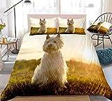 zpangg Juego de Fundas nórdicas para Perros 3D West Highland White Terrier Ropa de Cama para Perros Niños Niños Niñas Funda de edredón para Mascotas Juego de Cama Sunshine Double