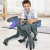 Remote Control Dinosaur Toys for Kids 2.4Ghz RC Dinosaur Robot Toys with Verisimilitude Sound for Kids Boys(Gray)