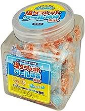 塩タブレット クール姉妹ポット 410g 約155粒