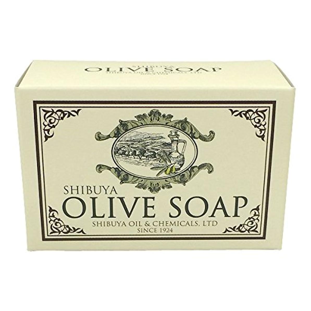 火傷凝視バーチャルSHIBUYA OLIVE SOAP (100G)