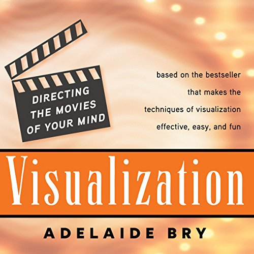 Visualization audiobook cover art