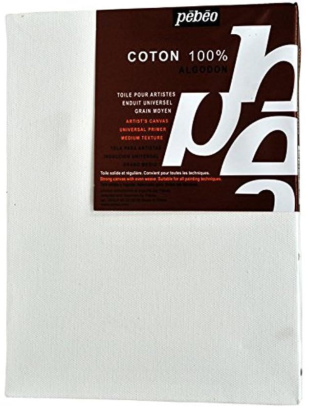 Pebeo 789960 Cotton Universalfirnis Frame 18 x 24 cm