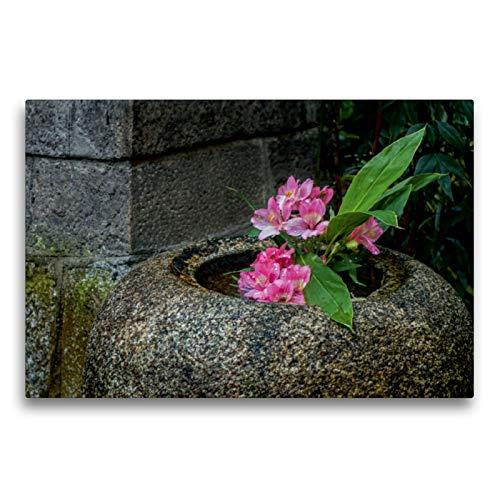 CALVENDO Premium Textil-Leinwand 75 x 50 cm Quer-Format Blüten in Einer Steinvase im Nishiki Tempel, Kyoto, Leinwanddruck von Lidschlag