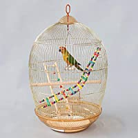 大規模なモデルの観賞用バードケージ取り外し可能なゴールド鳥の巣を救済鳥かごヴィンテージメタルバードケージオウムケージタイガースキン