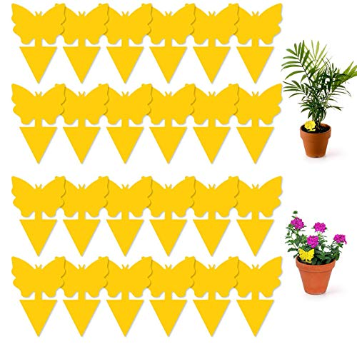 Bocianelli 48 Pcs Sticky Fly Traps, Yellow Fruit Fungus Gnat Trap Killer for Indoor and Outdoor, Protect The Plant
