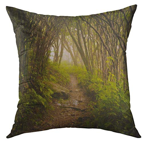 Beautiful Throw Pillows Cover 20 X 20 Inch15.8 Craggy Gardens Appalachian Hiking Trail Fog Blue Ridge Fathers Day throw pillow covers summer Luxury Soft for Car Business Gifts Bedroom seniors Chair