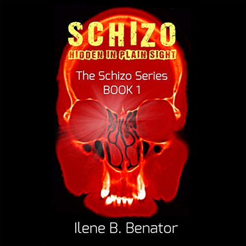Schizo: Hidden in Plain Sight audiobook cover art