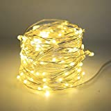 Satyam Kraft 5 Meter 50 LED Warm White LED Rice Light Fairy Light Christmas Home Decoration Light,Copper Wire Indoor Outdoor Bedroom Christmas Tree Lights Indoor Outdoor Decoration Fairy Light