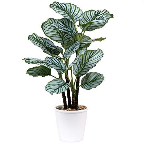 Piante artificiali da 63 cm Calatheas, Orbifolia, Goeppertia, Orbifolia, Pianta tropicale in finto verde, per casa, giardino, ufficio, decorazione