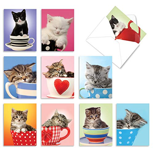 Thank You Note Cards with Envelopes (Box of 10), 'Cup-Cats' Greeting Cards for Weddings, Baby Showers and Holidays, Adorable Kitten and Cat Stationery Set 4 x 5.12 inch M2969