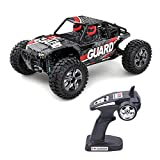 SGOTA RC Car 1/14 Scale Four-All Wheel Drive Model Car High Speed Radio Controlled Vehicle 2.4Ghz Off-Road Buggy Children Toys