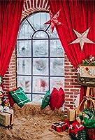 Qinunipoto クリスマス 写真撮影用 背景布 冬 布 撮影用 背景 バックペーパー 窓 布バック 背景シート 背景紙 背景ポスター 写真館 撮影 小道具 自宅用 パーティー ポリエステル 洗濯可1.5x2.5m