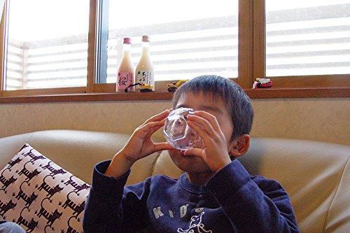 米麹甘酒あまざけ米こうじ人気ギフトストレート甘酒プレーン740ml×6本三崎屋醸造あま酒あまさけ無加糖新潟健康飲料